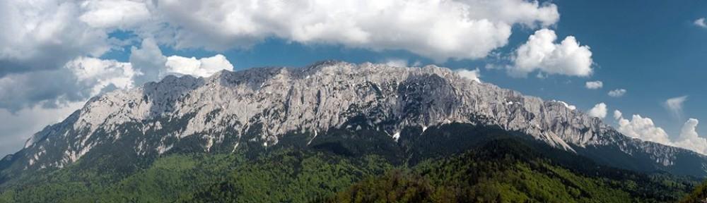 Pensiunea Aliart Zarnesti ofera cazare la poalele muntilor Piatra Craiului