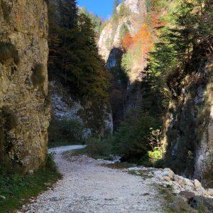 Peisaj din Prăpăstille Zărneștiului.